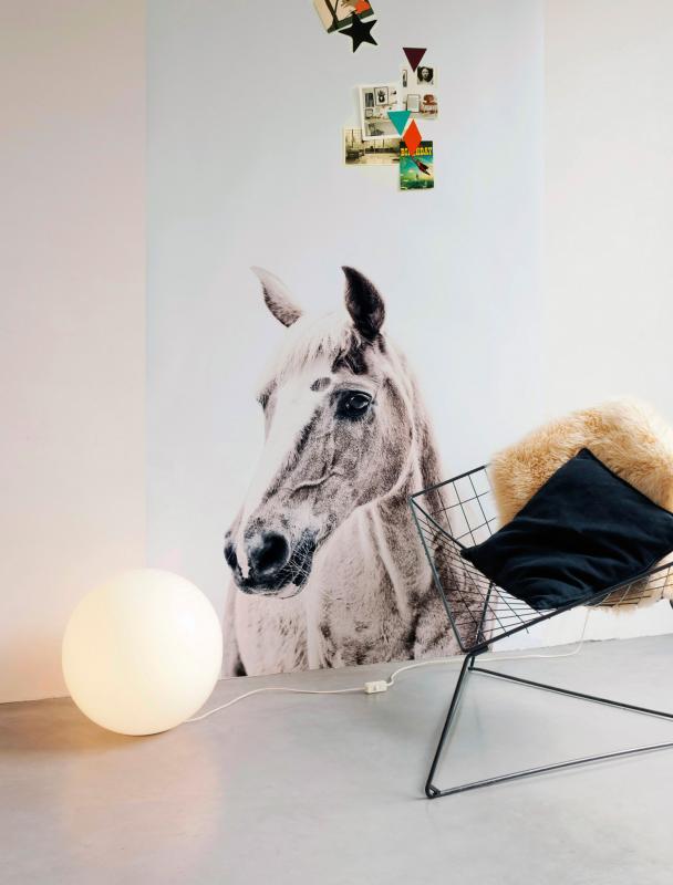magneetbehang-paard-large